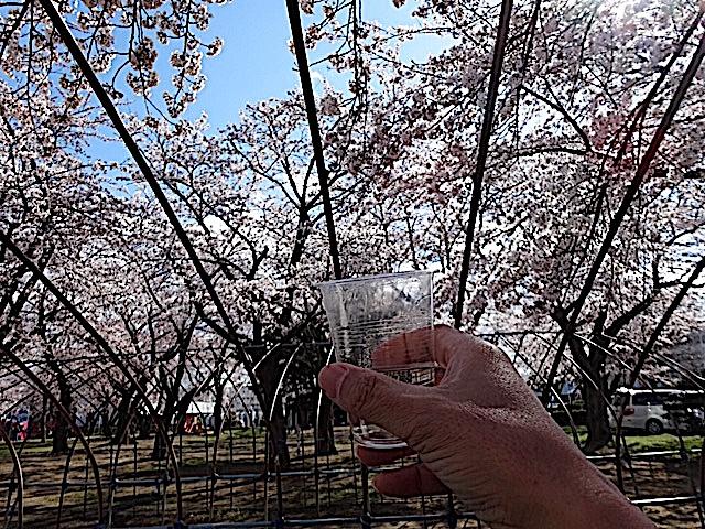 0422三沢公園8