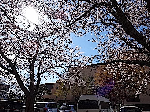 0422三沢公園9
