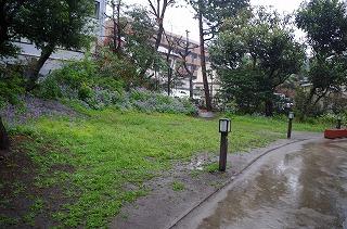 s-IMGP4018.jpg