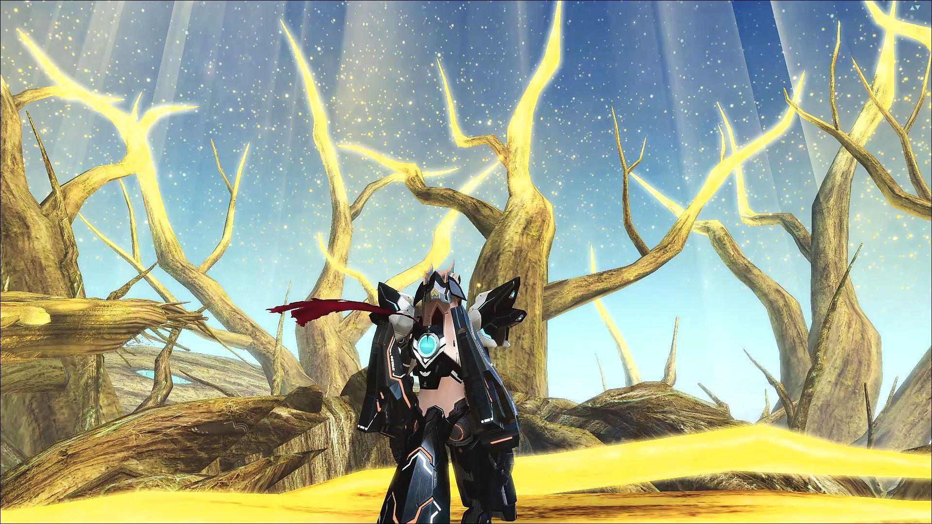 Phantasy Star Online 2 000245681.jpg