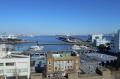 屋上から見る海