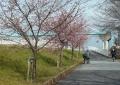 向こうは寿橋のアーチ