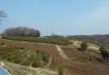比良の丘から見る南方