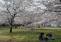 河川敷中央公園②