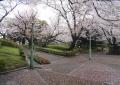 山手公園①
