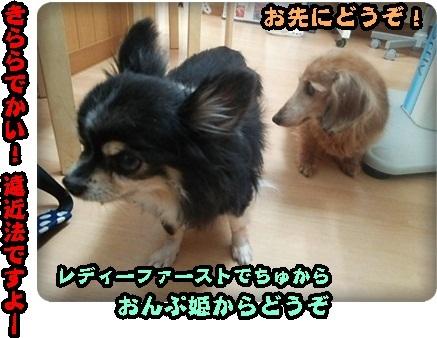 おんぷマイクロ2DSC_4033