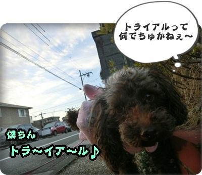 ふぅ太郎トライアル001