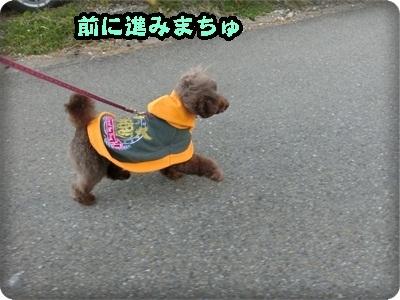 ふぅ太郎トライアル2008