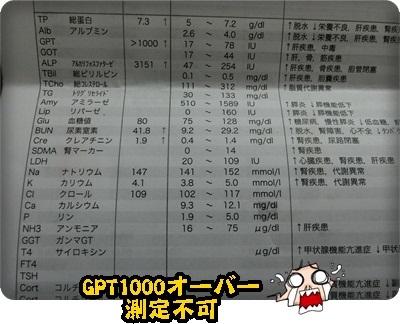 おんぷ数値053