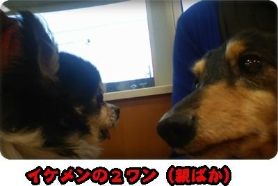 海みしま2DSC_4364