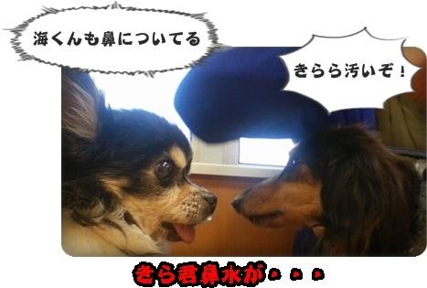 海みしま2DSC_4366