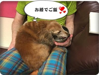 はるひとおんぷだIMG_5133