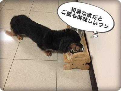 はるひとおんぷだIMG_5134