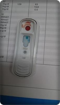 フィラリア検査DSC_4443