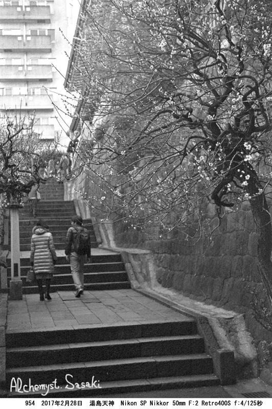 湯島天神954-66