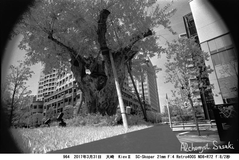 スロー大崎964-7