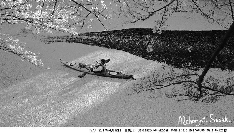 花筏970-11