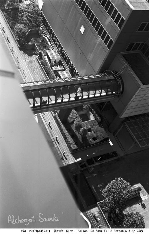 昭和大学973-32