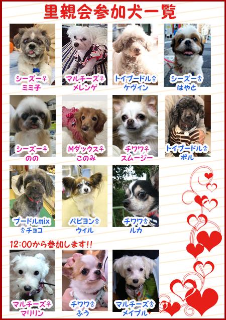 poster2_201702102226180c2.jpg