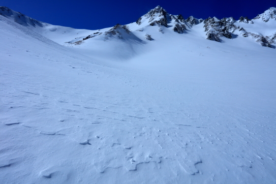 風の去った雪原とサギダルの頭