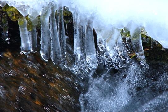 清流に氷柱