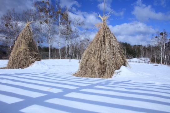 早春の陽を浴びる残雪の藁塚