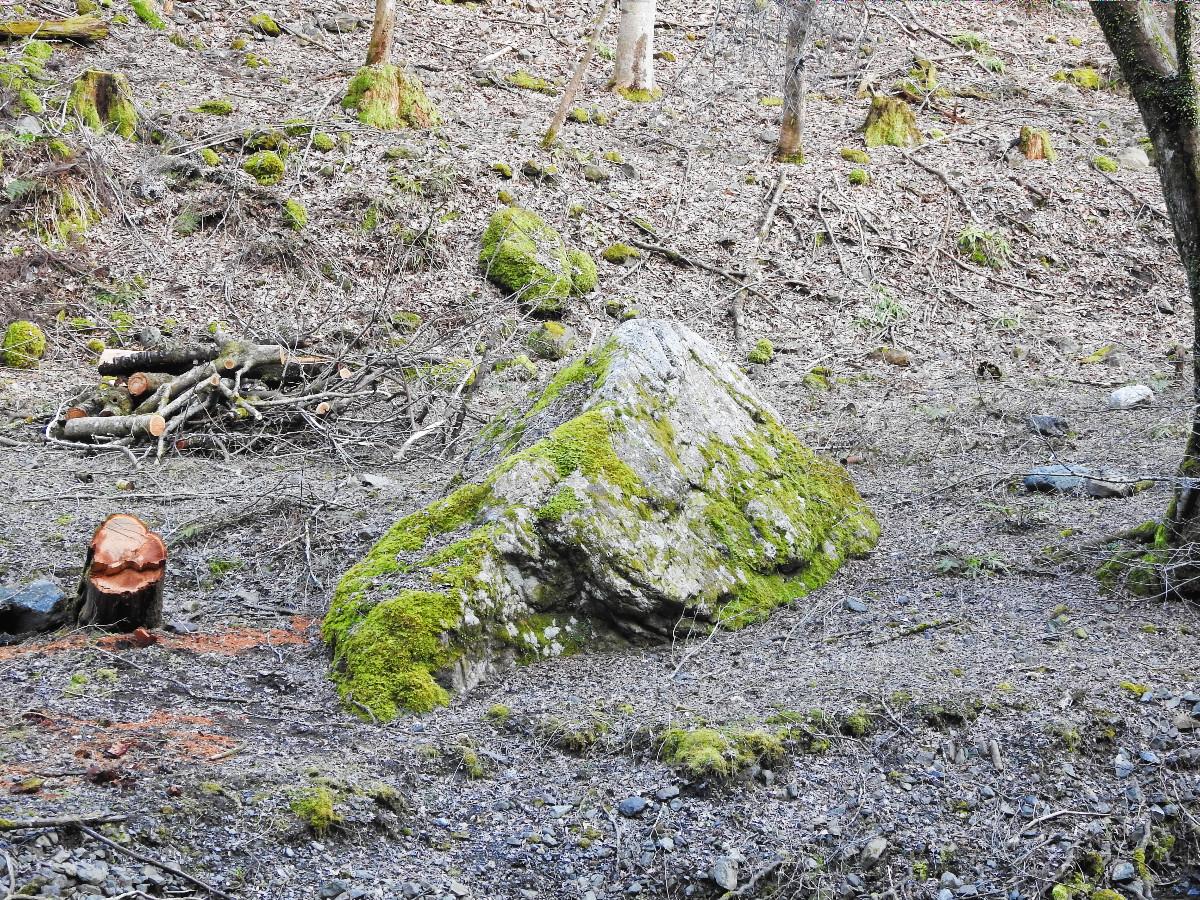 烏帽子岩DSCN9796
