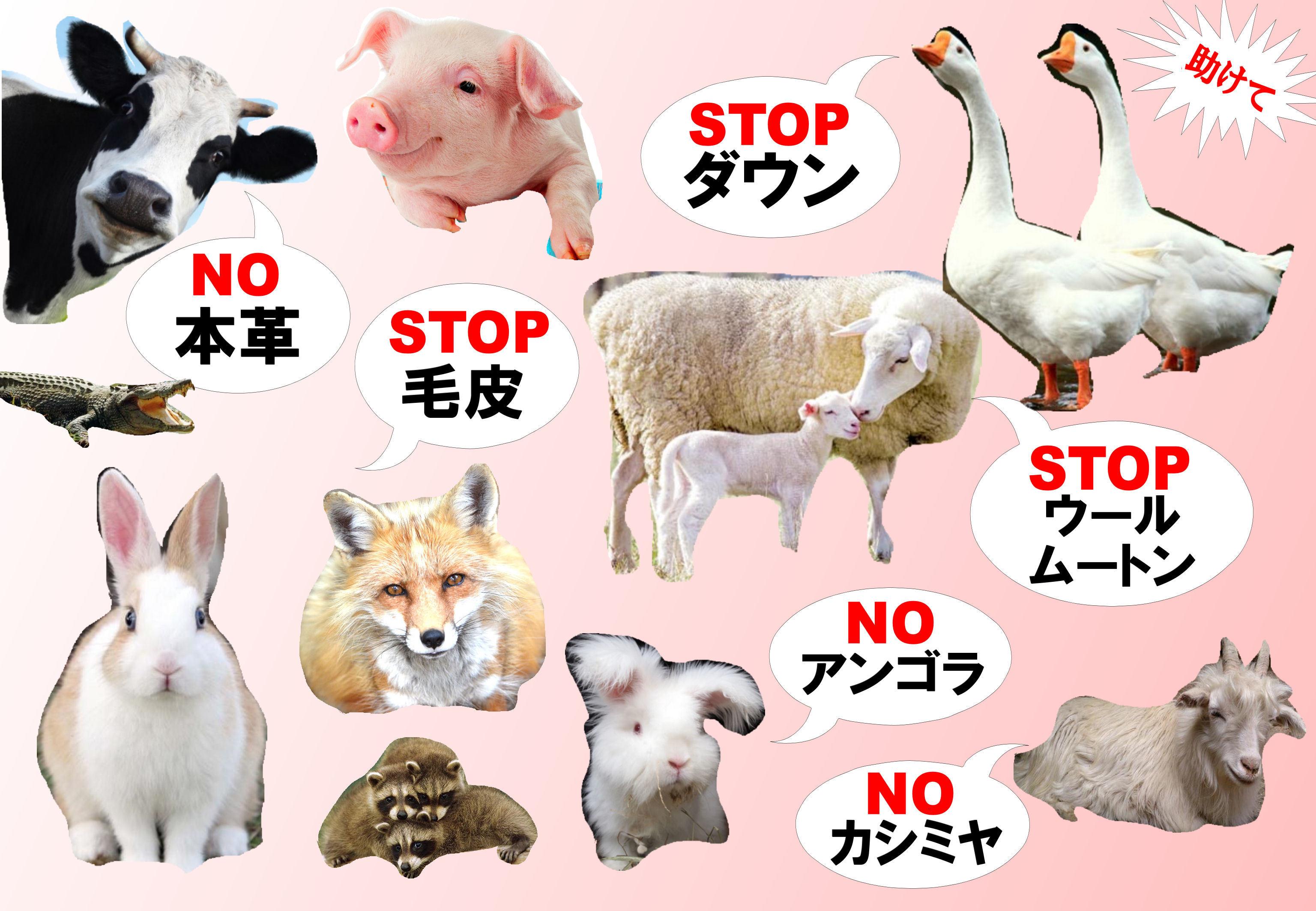 animalfreeBASE2.jpg