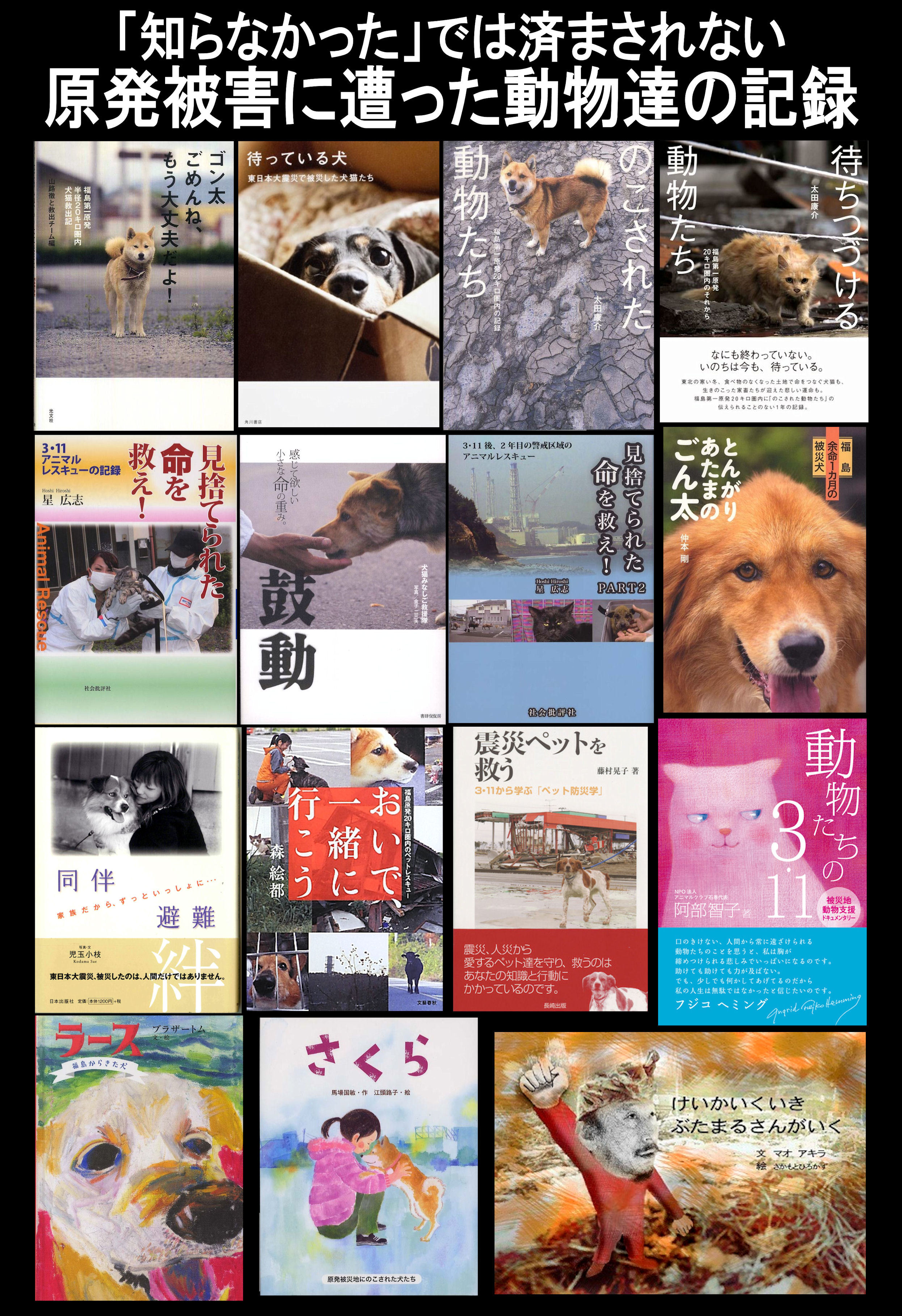 hisaibook2.jpg