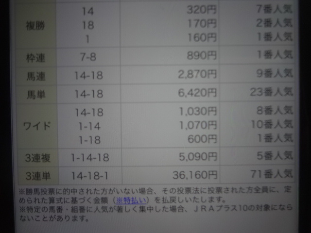 DSC03195.jpg