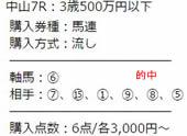 sp48_2.jpg