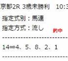 st212_1.jpg