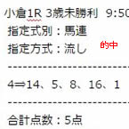 st219_1.jpg