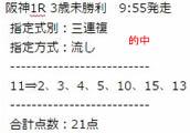 st41_2.jpg