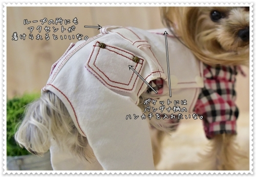 DSC_81900421.jpg