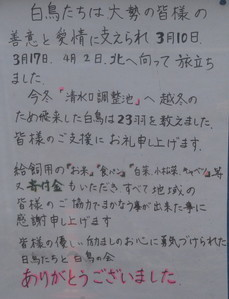 20170403DSC_9255ss.jpg