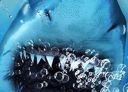 パチンコ「CR JAWS~it's a SHARK PANIC~」で使用されている歌と曲の紹介。「JAWS THEME」
