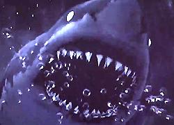 パチンコ「CR JAWS~it's a SHARK PANIC~」で使用されている歌と曲の紹介。「ROSIER / LUNA SEA」