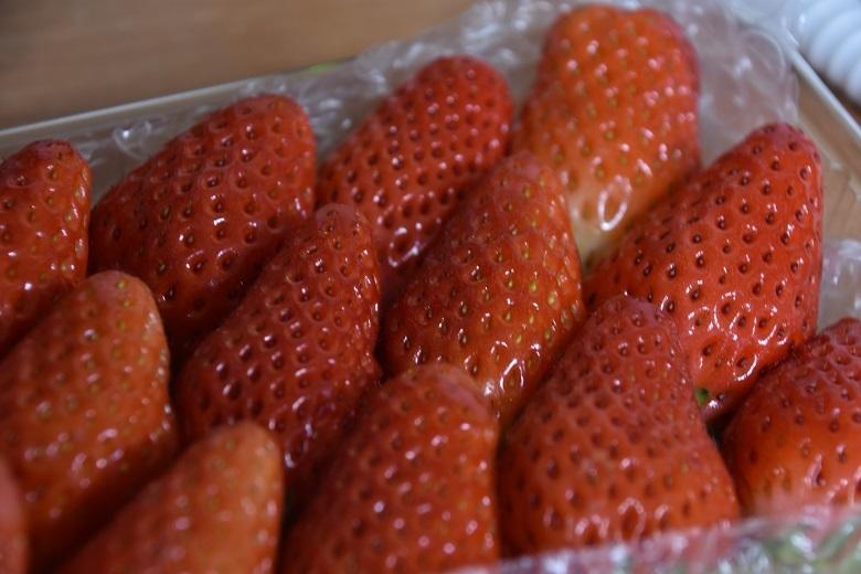 005 イチゴ