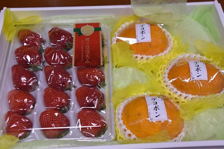 003 フルーツ