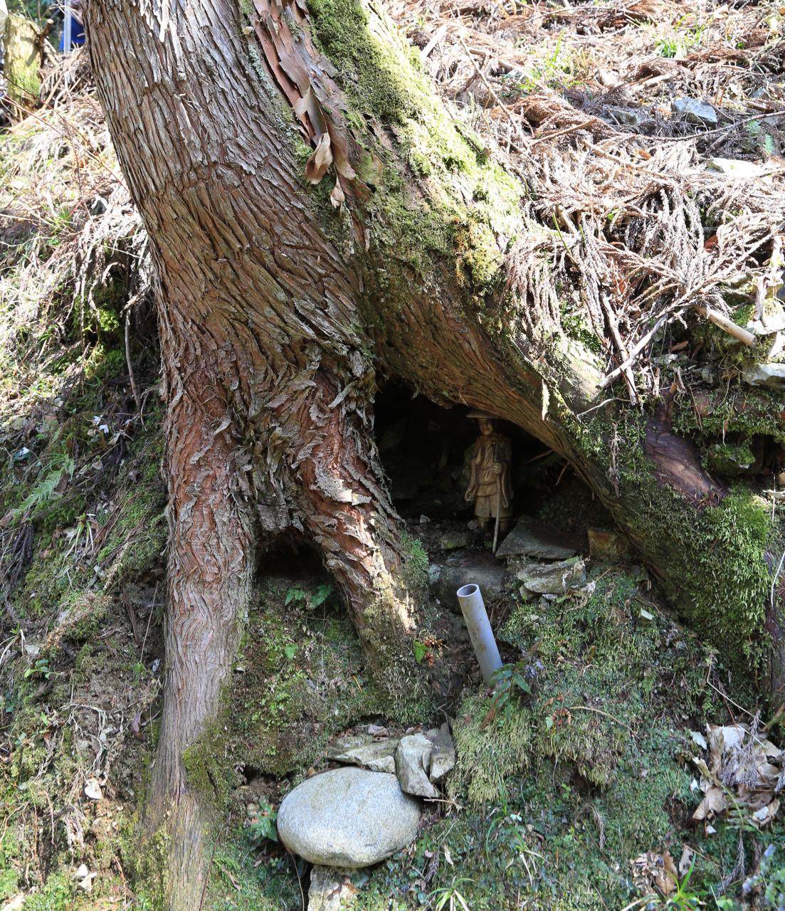 木の中のお地蔵様