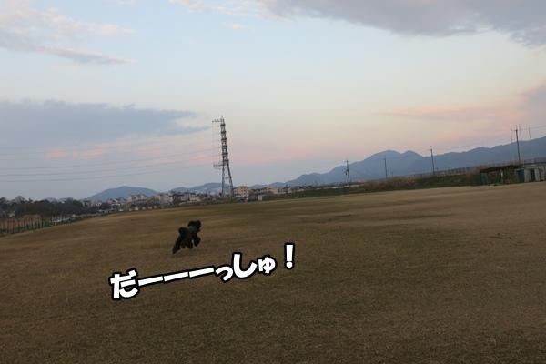 IMG_679120170301.jpg