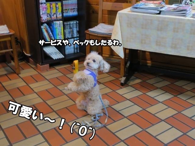 IMG_758120170320.jpg