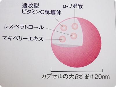 AOカプセルの構図