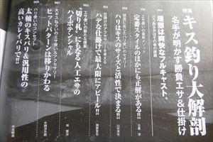 P1170141.jpg