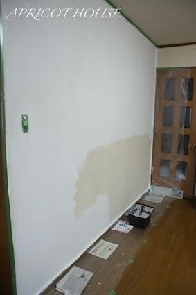 170306壁塗り