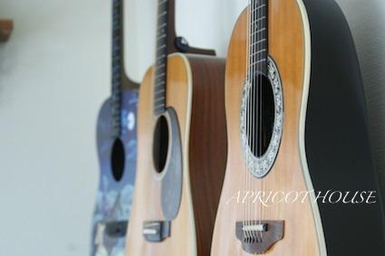 170409ギター横