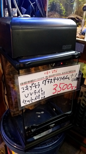 s-20170331_172810.jpg