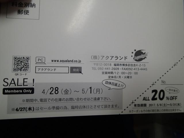 P4240079.jpg