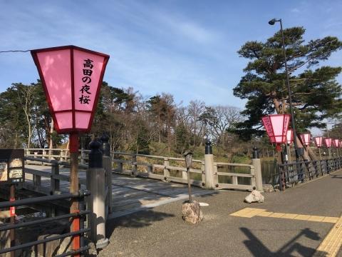2017-03-25ぼんぼり